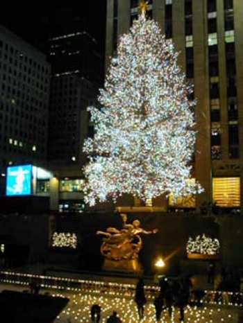 Rockefellertree